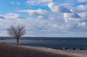 Smartphone Nature photography: Grogarnsberget. Photo: Jim Sundberg