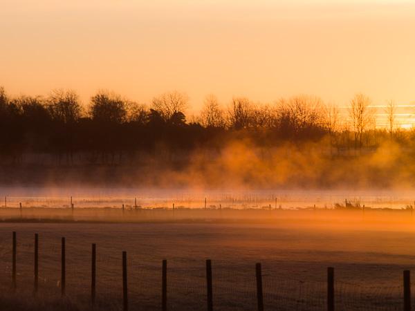 Coronafri fågelkurs: Vacker soluppgång på Gotland. Foto: Jim Sundberg.