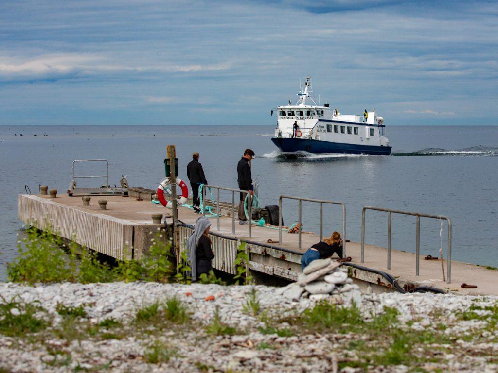 Landskapsfoto på Stora Karlsö. Vi tar oss bekvämt ut till ön med båt. Foto: Jim Sundberg/GotlandNature.